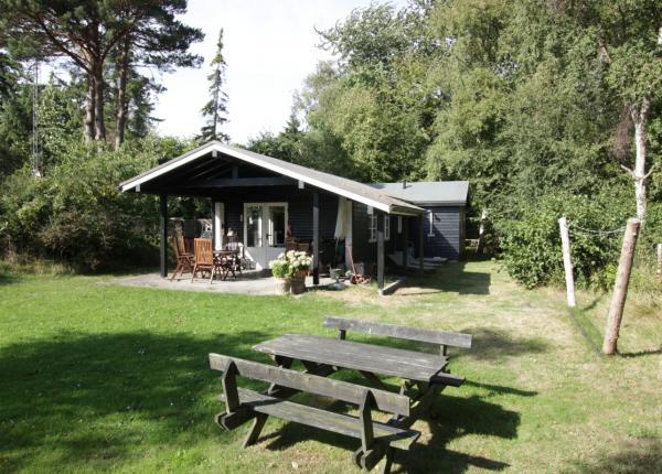DK-spitze-Strand-Ferienhaus 50 m